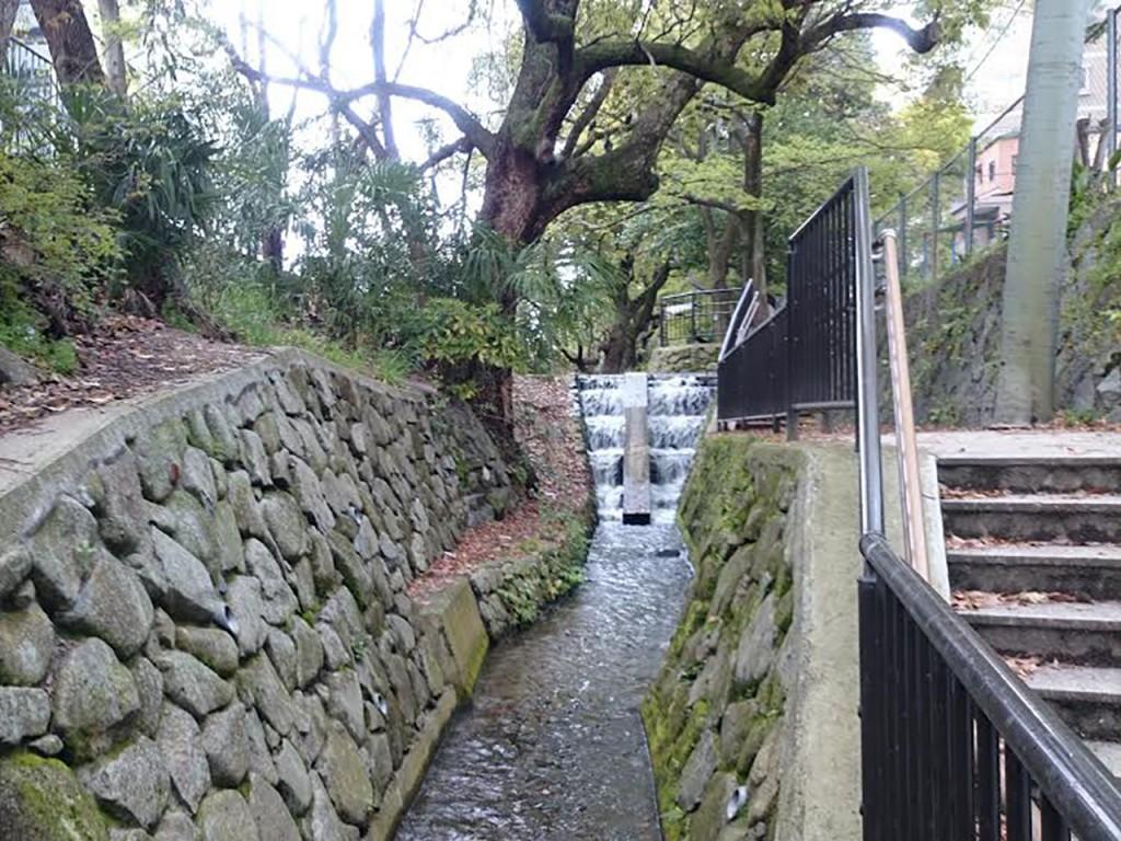 琵琶湖疏水から流れる堀川は、ゆったりと時間を忘れさせる