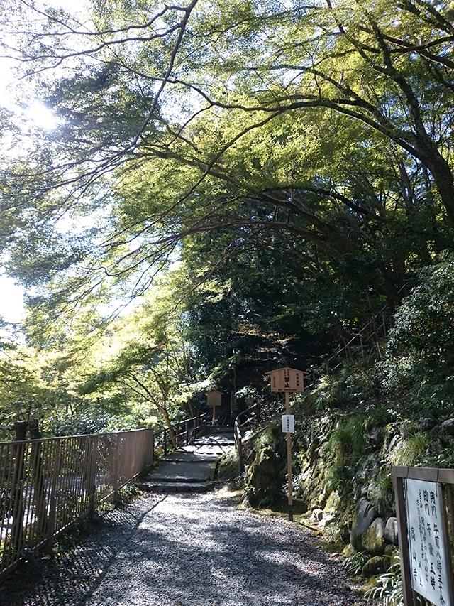 高山寺裏参道1