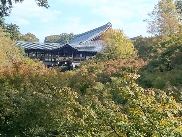 東福寺の紅葉・通天橋
