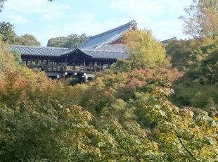 東福寺の紅葉EC