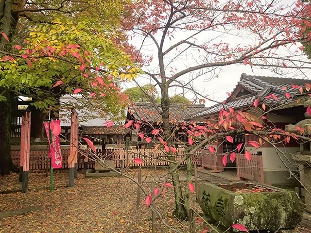 豊国神社5
