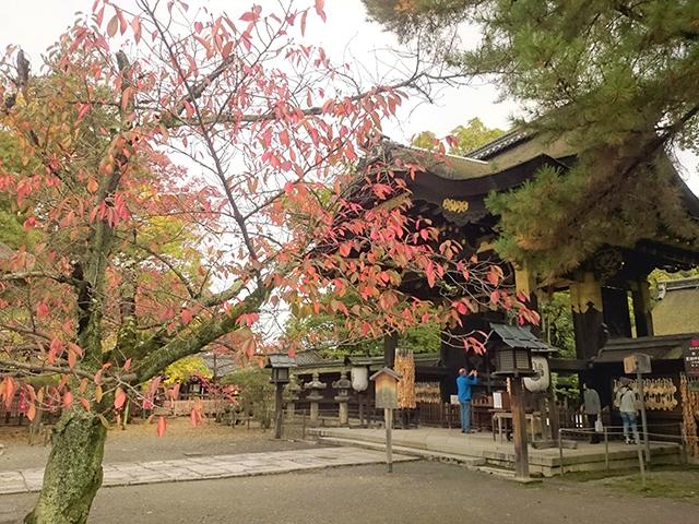 豊国神社3