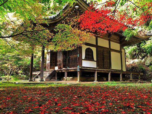 金蔵寺・開山堂