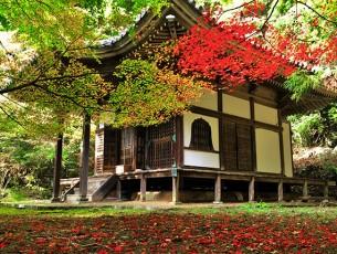金蔵寺EC