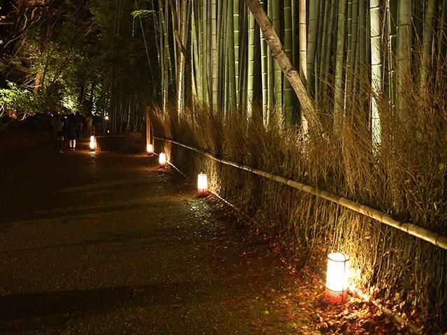 嵐山花灯路2015-01