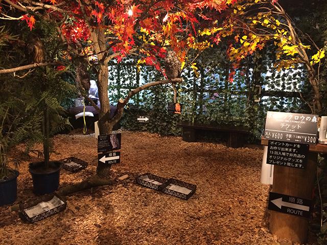 京都のフクロウの森2