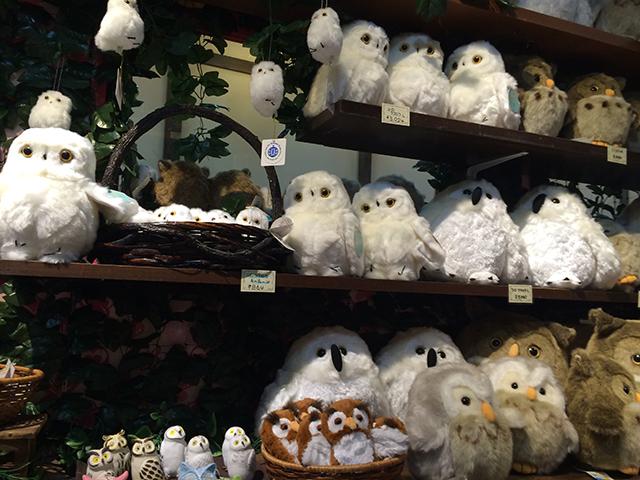 京都のフクロウの森-ぬいぐるみ
