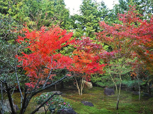写仏体験-勝林寺庭園