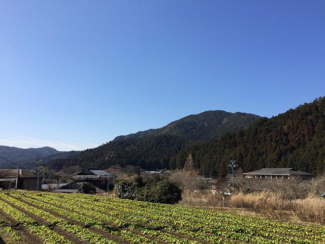 大原 - 景色