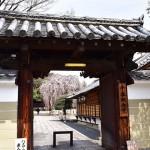 大報恩寺(千本釈迦堂)