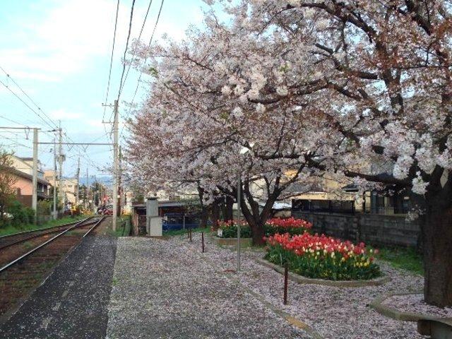 嵐電 - 龍安寺駅