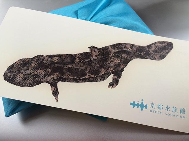 京都水族館 - リーフレット