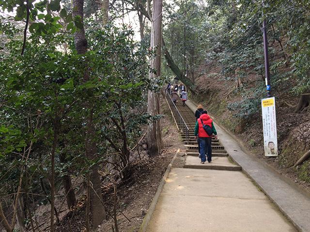 嵐山モンキーパークいわたやま2