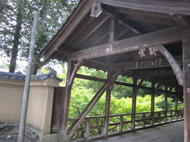 東福寺 - 臥雲橋8