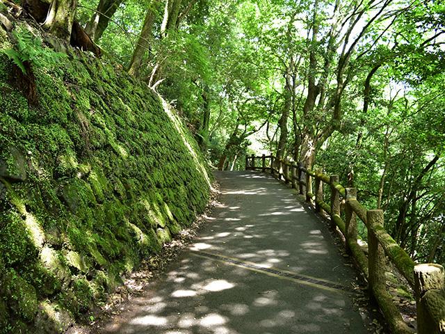 大悲閣千光寺への道