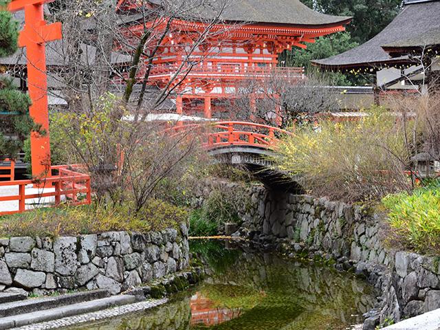 下鴨神社 - 御手洗池