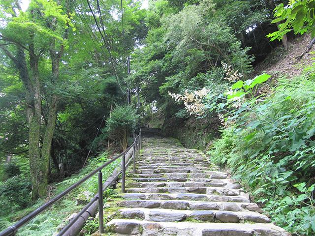神護寺 - 参道