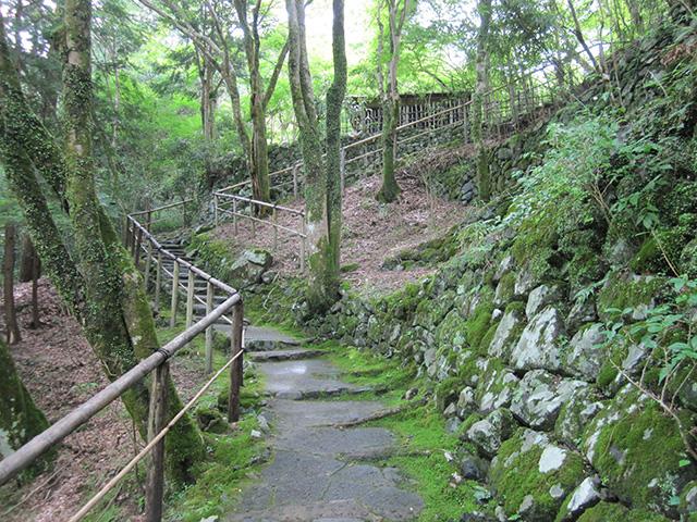 高山寺 - 裏参道2