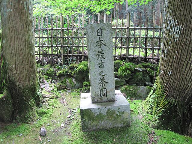 高山寺 - 茶園の碑