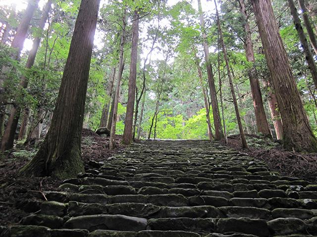 高山寺 - 金堂への階段