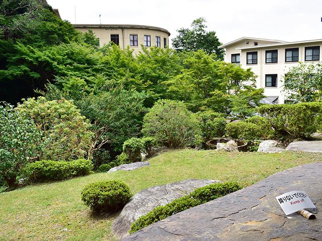 和中庵 - 庭園