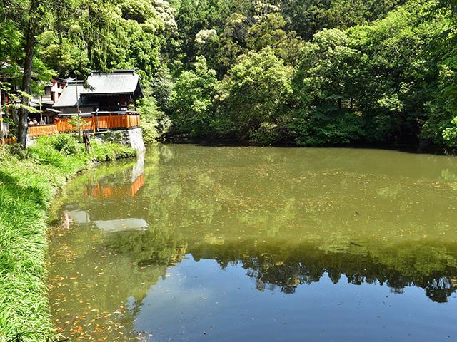 伏見稲荷大社 - 新池