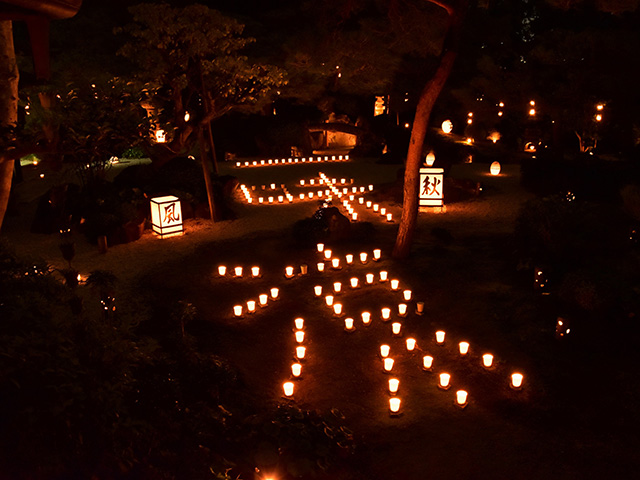 東林院 - 蓬莱の庭1