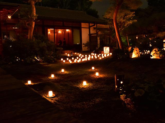 東林院 - 蓬莱の庭2