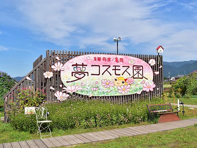 「夢コスモス園」の画像検索結果