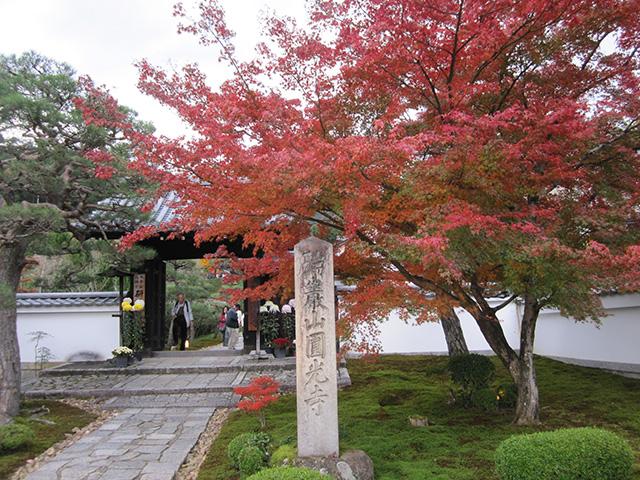 圓光寺 - 山門