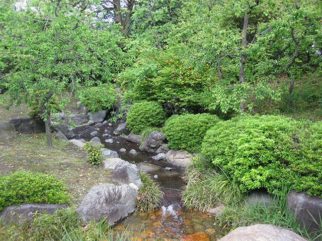 城南宮 神苑 - 春の山