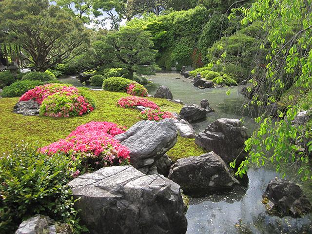 城南宮 神苑 - 室町の庭1
