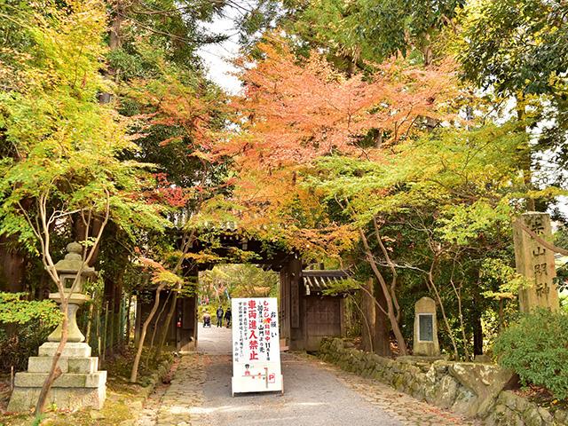 赤山禅院 - 山門