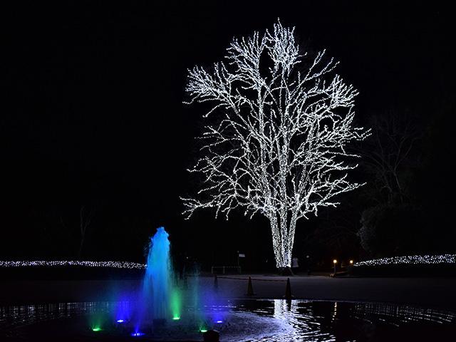京都府立植物園 - 北山門前
