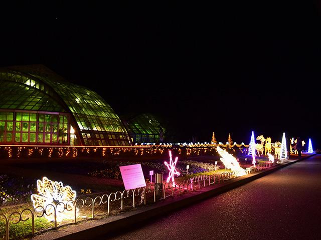 京都府立植物園 - 温室前1