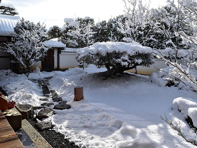 東林院 - 沙羅双樹の庭