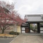 長徳寺 (非公開)