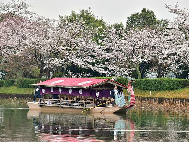 大覚寺の「華道祭」 - 舟席2