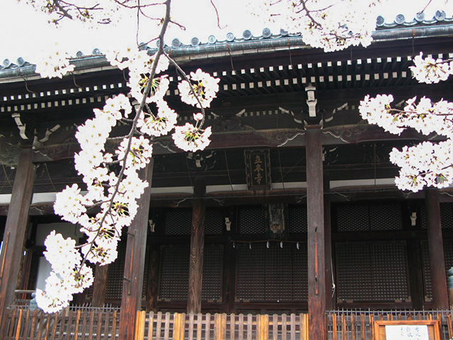 立本寺 - 本堂