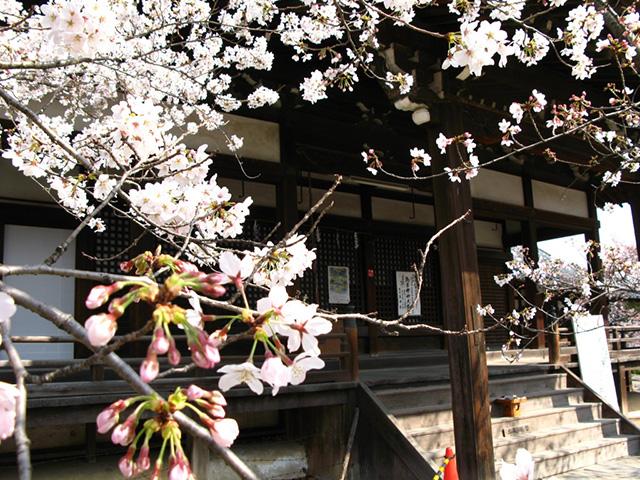 立本寺 - 刹堂