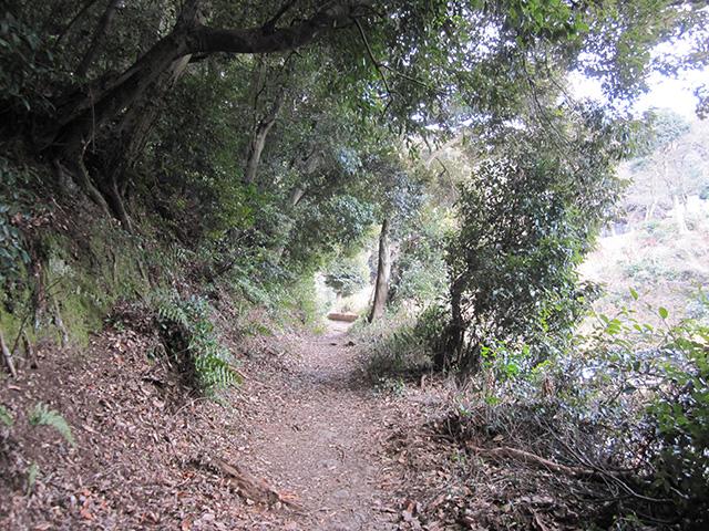 歌の中山 - 山道