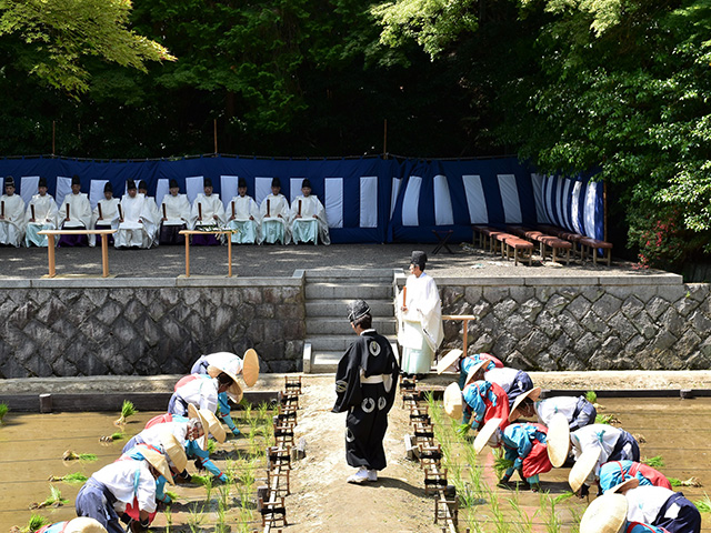 伏見稲荷大社 - 田植祭 早乙女1
