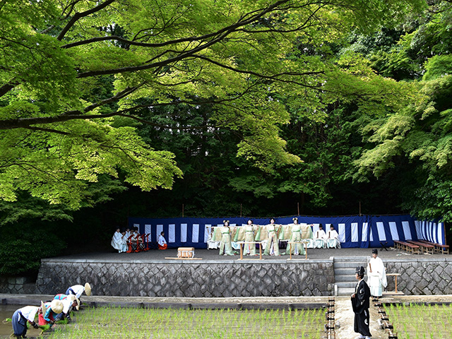 伏見稲荷大社 - 田植祭 御田舞2