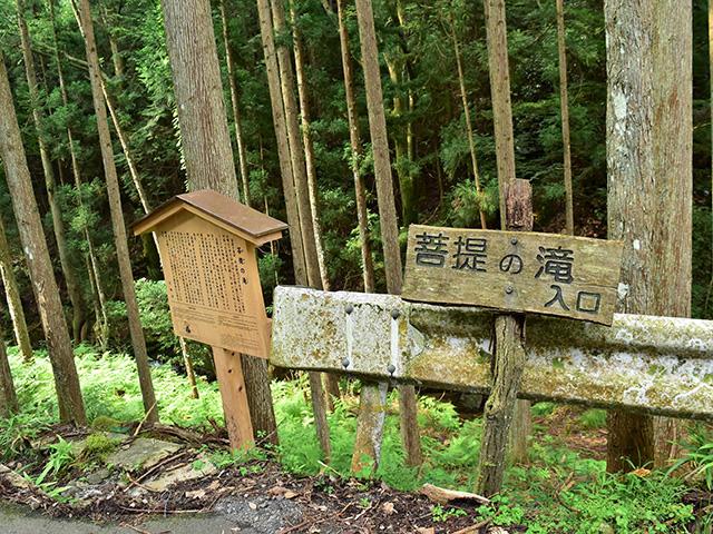 北山杉の里 - 京道2