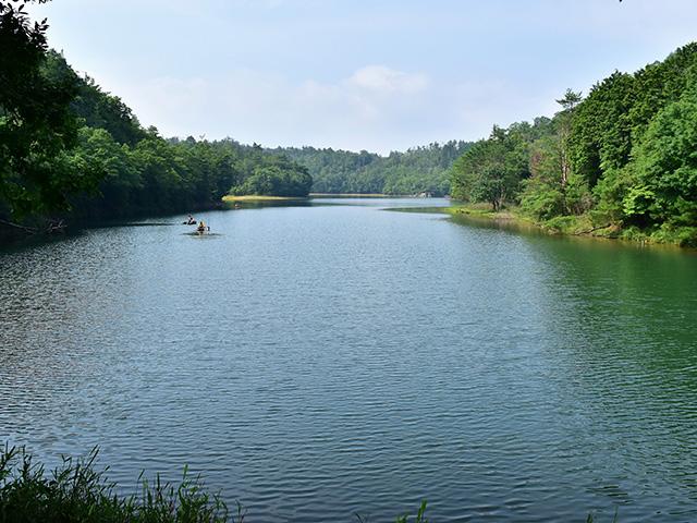 北山杉の里 - 沢の池1
