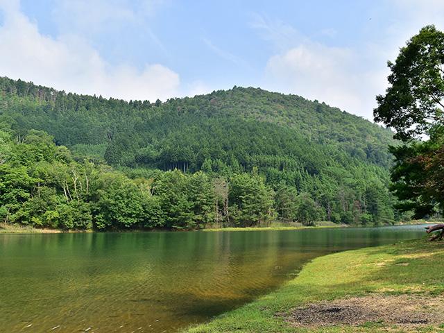 北山杉の里 - 沢の池3