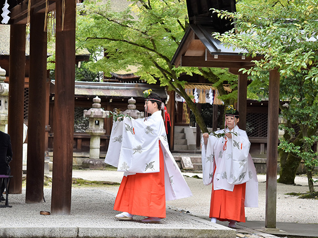 豊国神社 - 例祭3