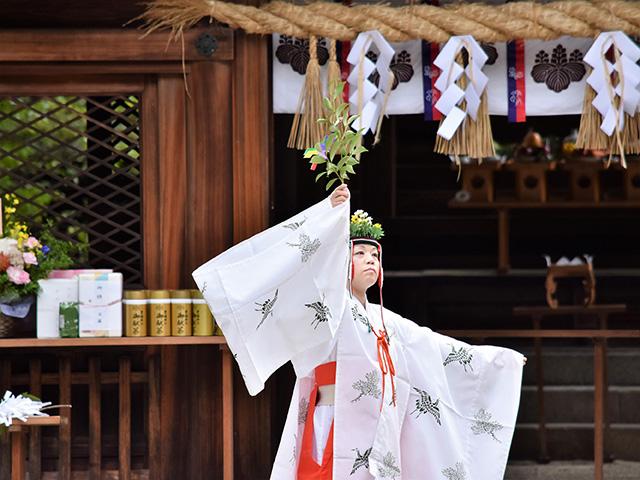 豊国神社 - 例祭4