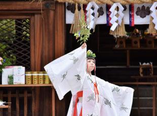 豊国神社 例祭EC