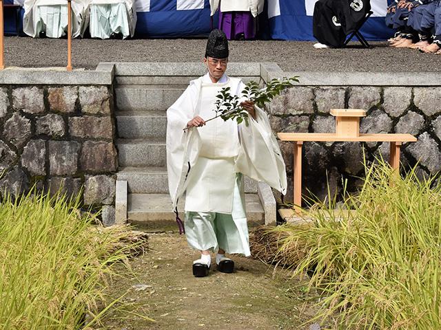 伏見稲荷大社 - 神田2